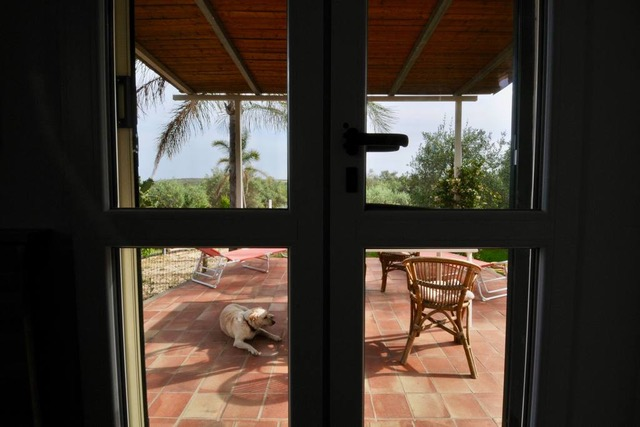 view-from-the-main-door